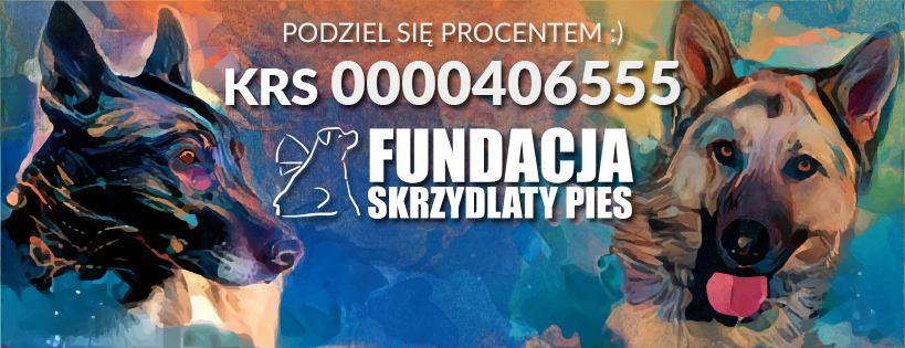 Forum SKRZYDLATY PIES Strona Główna